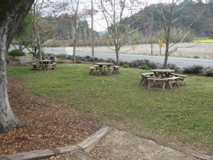Picnic area at Cuvaison Winery