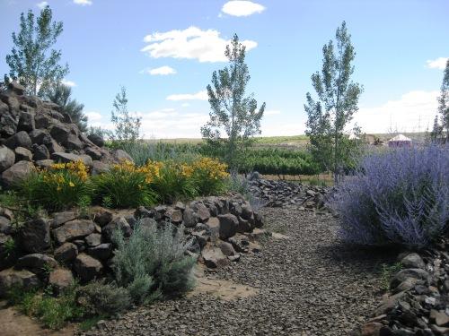 Lavender and rocks at SageCliffe Cave B