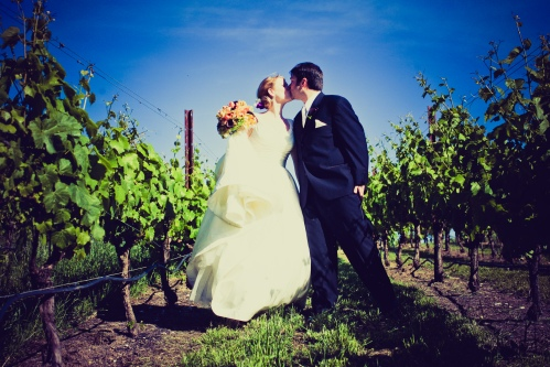 The bride and groom in the vineyard