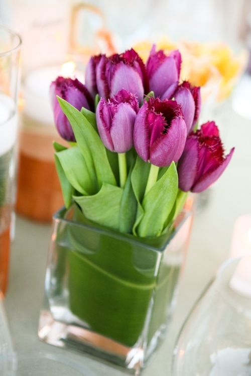 A centerpiece of Purple Fringed Tulips