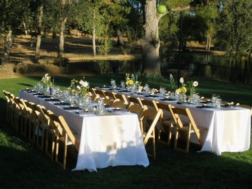 Long dinner tables at Young's Vineyard